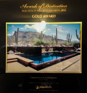 Gold Award 2011 - Geometric pool with vanishing edge