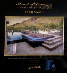 Gold Award Pools Vanishing Edge 2012